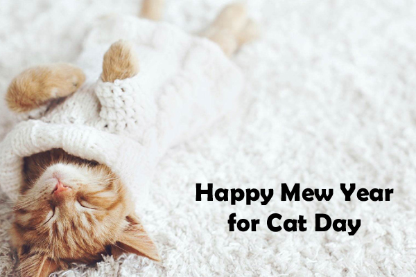 Happy Mew Year for Cat Day Messages